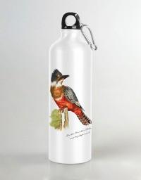 Botella de agua Martín Pescador